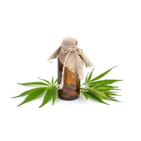 Platinium Critical Bud